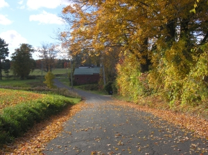 Country Road CT-1