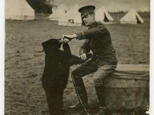 soldie-bear
